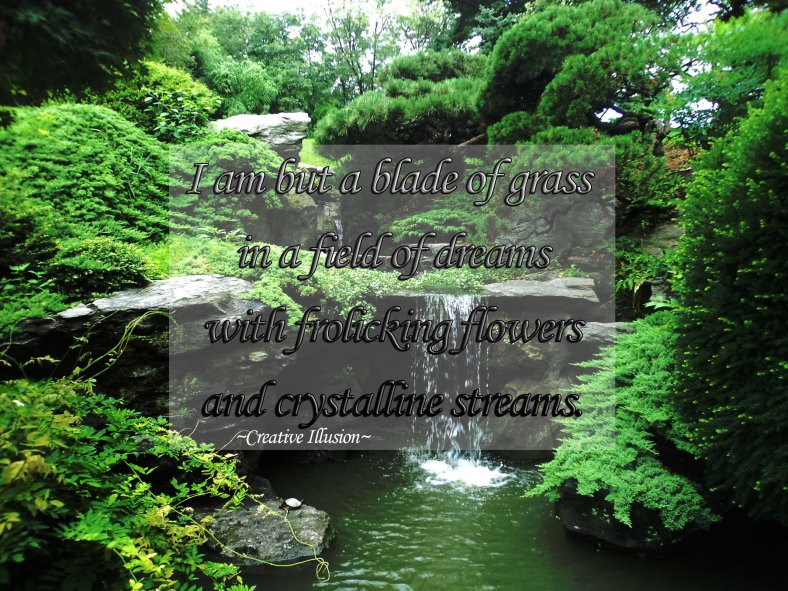 beautiful nature photo with poem