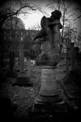 graveyard-8-cr2